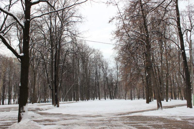 Люблинский парк зимой