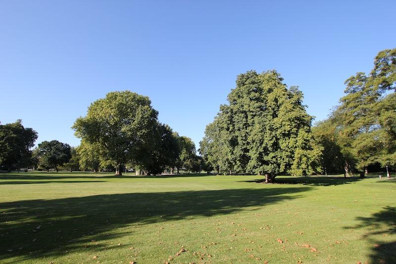Средний дворцовый парк