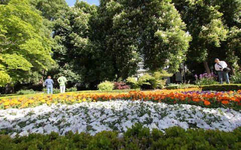 Божественная фантазия. Ботанический сад в Мадриде